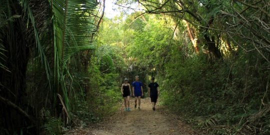 Sayulita Hike Tour