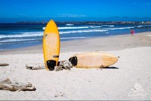 Surfboard Rental In Punta Mita With Wildmex