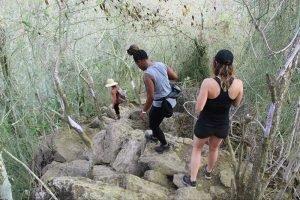 Hiking Monkey Mountain in Sayulita