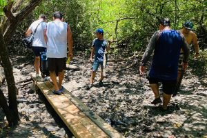 Surf Lessons in La Lancha Continue As Usual! Bridge Building By Wildmex
