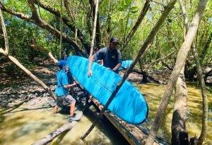 Surfing In La Lancha Continues As Usual! Bridge Building By Wildmex